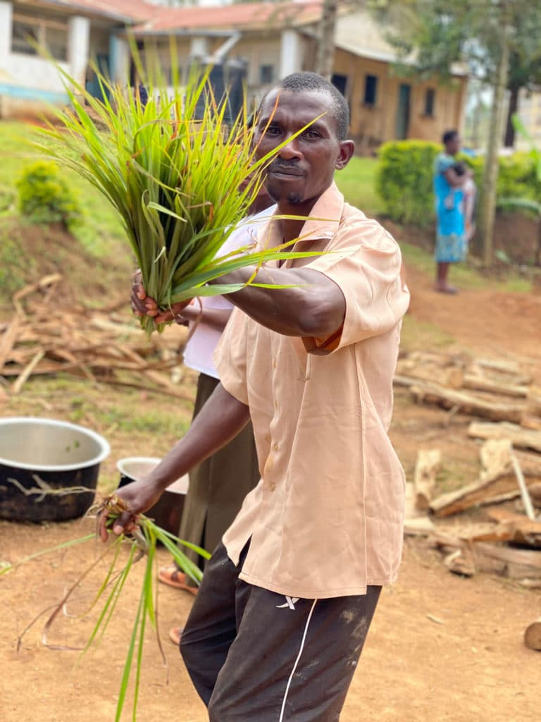 Kisato bringing freshly harvested lemongrass for 11 am tea break!