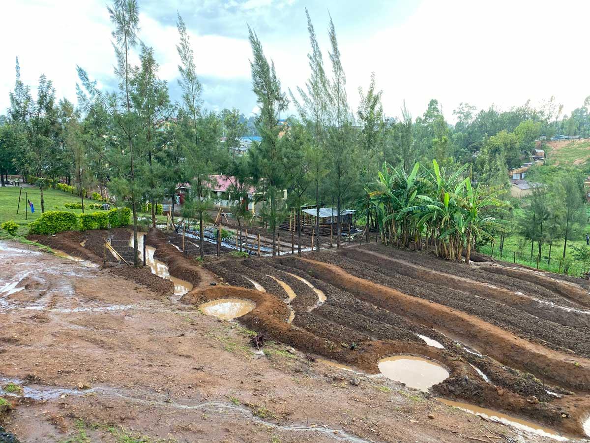 Water Harvesting