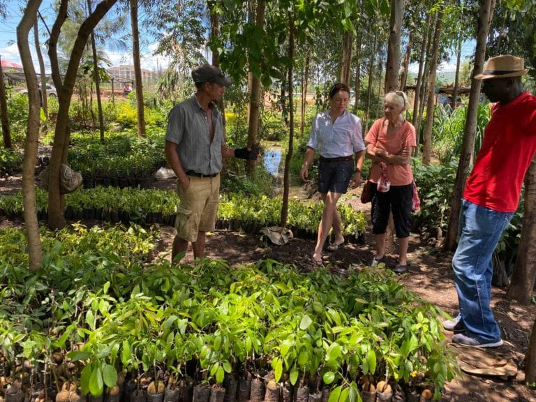 We found grafted mango and avocado seedlings at a nursery outside of town on our Sunday off last weekend. Grafted fruit trees produce fruit much more quickly and also create less shade within the food forest. Avos and mangos can grow very tall and take up to 7 years to bear fruit.